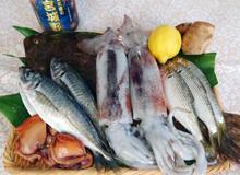 プロが教える魚の仕込みと盛り付け~4月期